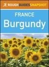 Burgundy Rough Guides Snapshot France