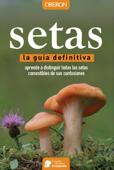 Setas Book Cover