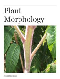 Plant Morphology Title