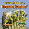 What Do You Find On A Saguaro Cactus