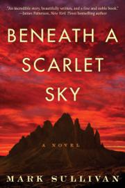 Beneath a Scarlet Sky book