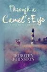 Through A Camels Eye