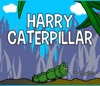 Harry Caterpillar