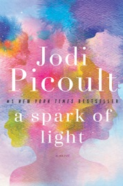 A Spark of Light PDF Download