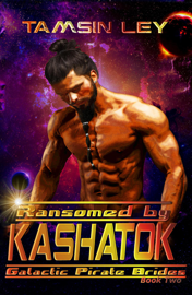Ransomed by Kashatok PDF Download
