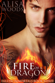 Fire of a Dragon (Fallen Immortals 3) book