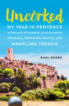 Uncorked My Year In Provence Studying Ptanque Discovering Chagall Drinking Pastis And Mangling French