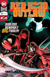 Red Hood: Outlaw (2016-) #29 book