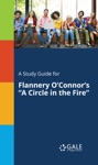 A Study Guide For Flannery OConnors A Circle In The Fire