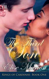 The Third Son book