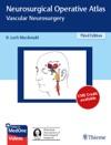 Neurosurgical Operative Atlas Vascular Neurosurgery