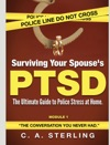 Surviving Your Spouses PTSD