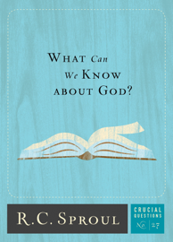 What Can We Know about God? book