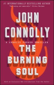 The Burning Soul PDF Download