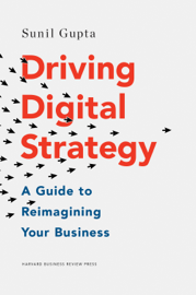 Driving Digital Strategy book