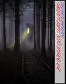 La Casa dei Fantasmi Book Cover