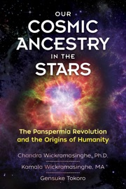Our Cosmic Ancestry In The Stars