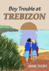 Anne Digby - Boy Trouble at Trebizon kunstwerk