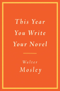 This Year You Write Your Novel Boekomslag