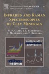 Infrared And Raman Spectroscopies Of Clay Minerals