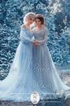 The Ice Princesss Fair Illusion