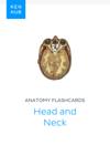 Anatomy flashcards: Head and Neck