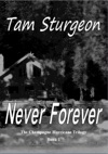 Never Forever The Champagne Hurricane Trilogy - Book 1