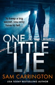 One Little Lie PDF Download