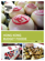 Hong Kong Budget Foodie