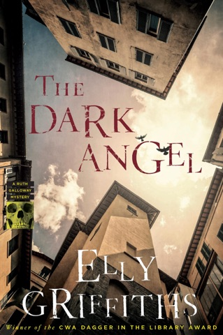 The Dark Angel PDF Download