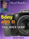 David Buschs Sony A99 II Fast Track Guide