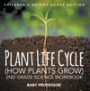 Plant Life Cycle How Plants Grow 2nd Grade Science Workbook  Childrens Botany Books Edition