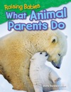 Raising Babies What Animal Parents Do