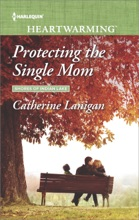 Protecting The Single Mom