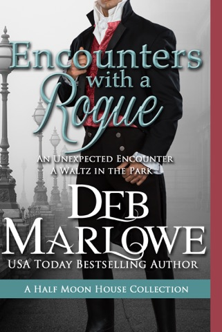 Encounters with a Rogue PDF Download