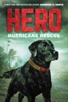 Hero Hurricane Rescue