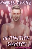 Destination Dungeon: A Gay Valentine Short Story