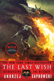The Last Wish PDF Download