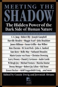 Meeting the Shadow Copertina del libro