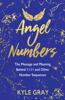 Kyle Gray - Angel Numbers kunstwerk
