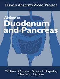 Abdomen: Duodenum and Pancreas