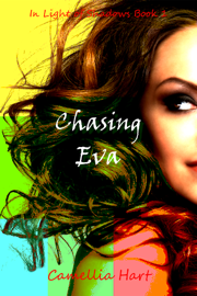 Chasing Eva book summary