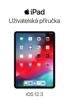 Apple Inc. - UЕѕivatelskГЎ pЕ™ГruДЌka pro iPad s OS 12.3 artwork