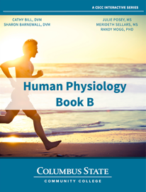 Human Physiology - Book B