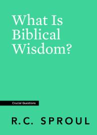 What Is Biblical Wisdom?