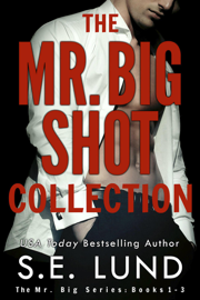 The Mr. Big Shot Collection by The Mr. Big Shot Collection