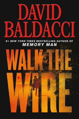 David Baldacci - Walk the Wire book