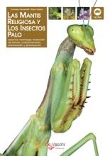La Mantis Religiosa Y Los Insectos Palo