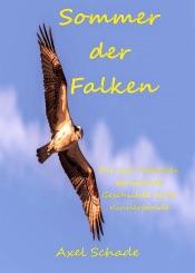 Download Sommer der Falken