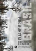 Brasil, construtor de ruínas Book Cover